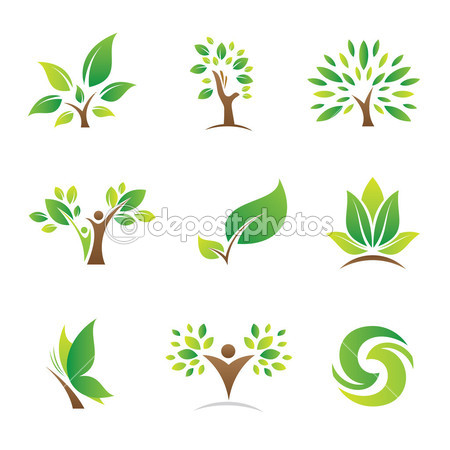thiết kế logo theo phong thủy 3